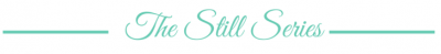 The Still Series Banner